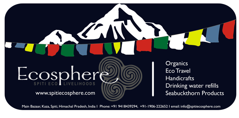 Ecosphere Marketing Materials Chikaboo Designs